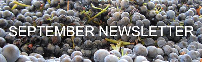 170926 SDI Hero Image NonClub Siduri Wine Update